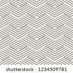 vector seamless pattern. modern ... | Shutterstock .eps vector #1234509781