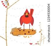 cute red northern cardinal bird ...   Shutterstock .eps vector #1234530004