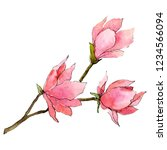 pink magnolia flowers with...   Shutterstock . vector #1234566094