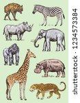 set of african animals.... | Shutterstock .eps vector #1234573384