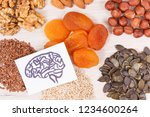 healthy food for brain power... | Shutterstock . vector #1234600264