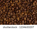 background of the roasted...   Shutterstock . vector #1234633207