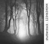 Small photo of Sunken Lane through Haunted Forest of Spooky Gnarled Beech Trees in Thick Fog