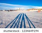salar de uyuni  bolivia   21...   Shutterstock . vector #1234649194