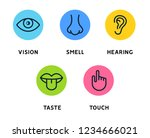 five human senses vision eye ... | Shutterstock .eps vector #1234666021