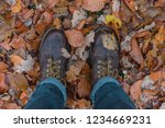 brown shoes with yellow fallen... | Shutterstock . vector #1234669231