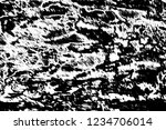abstract background. monochrome ... | Shutterstock . vector #1234706014