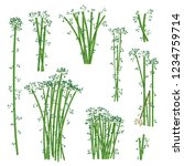 green bamboo illustration set.... | Shutterstock .eps vector #1234759714