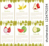 rambutan and banana  chompoo... | Shutterstock .eps vector #1234792354