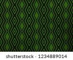 light green vector texture with ...   Shutterstock .eps vector #1234889014