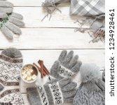 warm grey woolen knitwear ... | Shutterstock . vector #1234928461