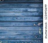 blue grunge wood plank... | Shutterstock . vector #123493699