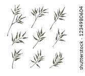 set of bamboo leaf design for... | Shutterstock .eps vector #1234980604