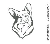 dog breed corgi in black and...   Shutterstock .eps vector #1235018974