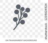 mimosa icon. trendy flat vector ... | Shutterstock .eps vector #1235024524
