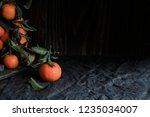 fresh harvest. organic ripe... | Shutterstock . vector #1235034007
