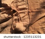 close up texture of drying... | Shutterstock . vector #1235113231