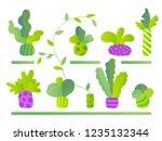 plant growing set. eco design... | Shutterstock .eps vector #1235132344