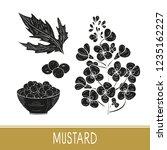 mustard. plant. flowers  leaves ... | Shutterstock .eps vector #1235162227