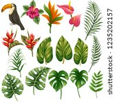 huge collection of tropical... | Shutterstock .eps vector #1235202157