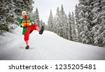 christmas time and green young... | Shutterstock . vector #1235205481