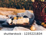 cheese brie and plums on a... | Shutterstock . vector #1235221834