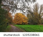 path in park in europe with... | Shutterstock . vector #1235238061
