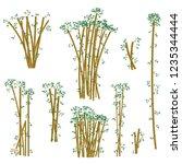 brown bamboo illustration set.... | Shutterstock .eps vector #1235344444