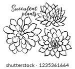 ink hand drawn succulents... | Shutterstock .eps vector #1235361664