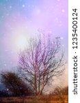 fantasy landscape tree and... | Shutterstock . vector #1235400124