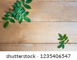 green leaf branches on wooden... | Shutterstock . vector #1235406547