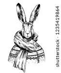 sketch of rabbit in sweater and ... | Shutterstock .eps vector #1235419864