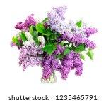 fresh lilac flowers | Shutterstock . vector #1235465791