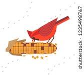 cute red northern cardinal bird ...   Shutterstock .eps vector #1235498767