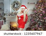 seductive woman in red near the ... | Shutterstock . vector #1235607967
