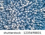 winter snow covered pine forest....   Shutterstock . vector #1235698831