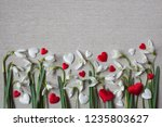 spring flowers snowdrops and... | Shutterstock . vector #1235803627