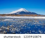mt fuji  in the early morning....   Shutterstock . vector #1235910874