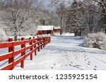 Beautiful Winter Nature...