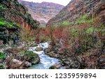 beautiful rivers between... | Shutterstock . vector #1235959894