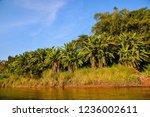 beautiful photo landscape taken ... | Shutterstock . vector #1236002611