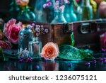 flower collection in vintage... | Shutterstock . vector #1236075121