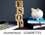 esop employee stock ownership... | Shutterstock . vector #1236087751