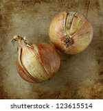 organic onions on an old rustic ...