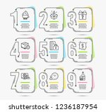 infographic timeline set of... | Shutterstock .eps vector #1236187954