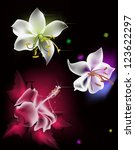 illustration with three lily... | Shutterstock .eps vector #123622297