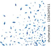 confetti of two colored rhombs...   Shutterstock .eps vector #1236269311