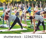 a group of young people do yoga ... | Shutterstock . vector #1236275521