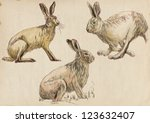Stock photo collection three studies hare in motion hand drawing on old brown paper 123632407