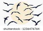 Gulls. Flocks Of Birds....
